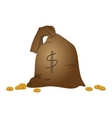 bags with money vector image