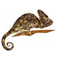 chameleon brown vector image