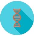 Genes vector image vector image