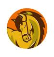 horse stallion head retro vector image vector image