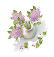 lilac in vase vector image