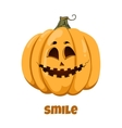 Pumpkin for Halloween Emotions Smile vector image vector image