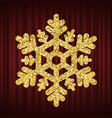 snowflake glowing ice shining decoration vector image