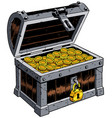 treasure chest on white vector image