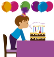 Boy in his birthday vector image