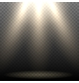 Empty Stage Lighting vector image vector image