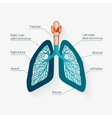 flat design icon human lungs vector image