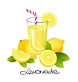 Fresh lemonade with lemon fruit slice Realistic vector image vector image