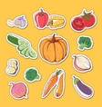 fresh organic vegetables isolated labels vector image vector image