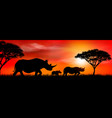 group african rhinos at sunset vector image vector image