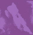 lilac grunge texture vector image