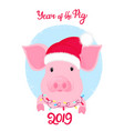 piggy in santa s hat with a garland around his vector image vector image