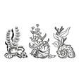 sea shells algae hand drawn sketch style vector image vector image