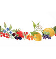 beautiful seamless berry pattern with vector image
