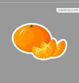 cartoon fresh tangerine or mandarin sticker vector image vector image