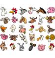farm animals cartoon heads big set vector image