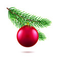 fir tree branch with new year or xmas toy vector image