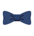 hipster bowtie accessory vector image