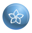 plumeria flower icon simple style vector image