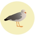 seagull 3 vector image vector image