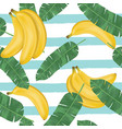 seamless pattern bananas with banana leaves vector image vector image
