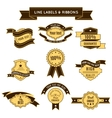 Colored Conceptual Label Set And Ribbons vector image