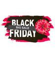 limited promotion black friday postcard vector image
