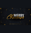 merry christmas and happy new year dark vector image