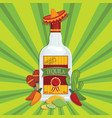 mexican tequila decoration vector image