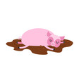 sleeping pig in mud farm animal is sleeping vector image vector image