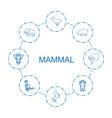 8 mammal icons vector image vector image
