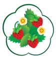 Forest berry vector image