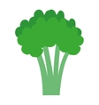 green broccoli tree graphic vector image