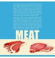 Poster design with meat and text vector image vector image