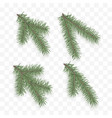 set of realistic fir branches holiday ornate vector image vector image