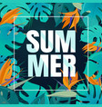 summer tropical leaves background vector image