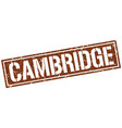 cambridge brown square stamp vector image vector image