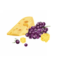 Cheese and grapes vector image