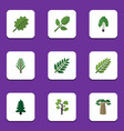 flat icon bio set of leaves jungle park and vector image vector image