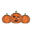 halloween threee pumpkin scary decoration vector image vector image