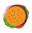 hamburger fast food vector image vector image