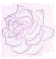 Rose outline vector image vector image