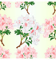 seamless texture rhododendrons vector image vector image