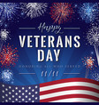 veterans day lettering fireworks vector image vector image