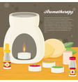 aromatherapy flat design vector image