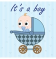 Baby boy in baby carriage vector image vector image