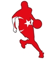 basketball colors of Turkey vector image vector image