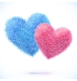 Blue and pink pair of hearts vector image vector image