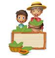 farmer with papaya on wooden board vector image vector image
