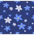 forget-me-not vector image